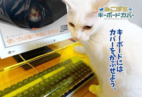 anti-cat-keyboard
