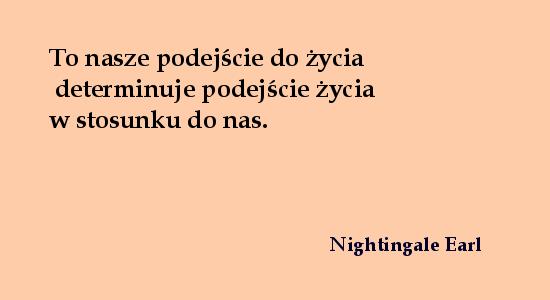 cytat8